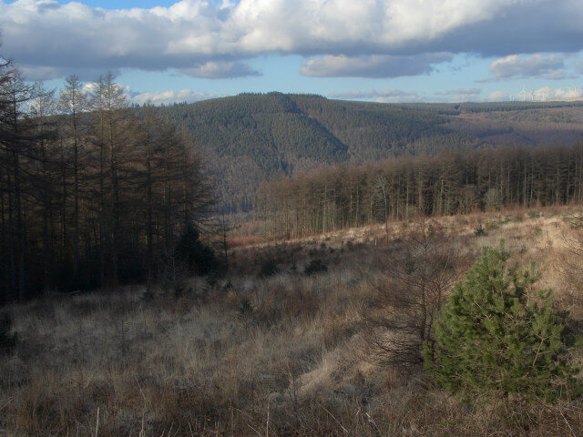 Afan Forest Park places to visit South Wales